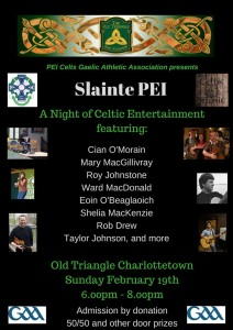 Slainte Concert PEIGAA Sun Feb 19th 2017 6pm Cian Eoin